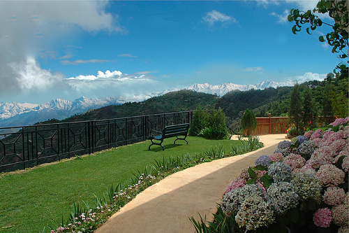 the-terraces-spa-resort-kanatal-923869