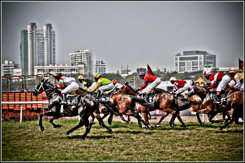 Image result for Indian Derby Weekend, Maharashtra